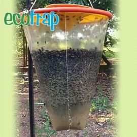 Armadilha Ecotrap